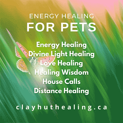 Healing for Pets